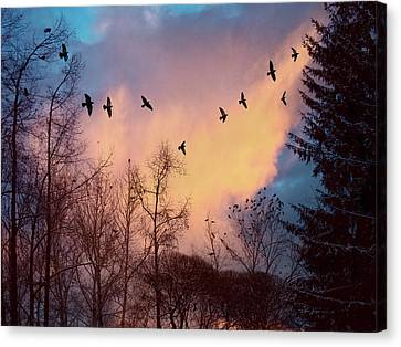 Canvas Print featuring the photograph Birds Fly by Vladimir Kholostykh