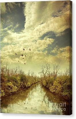 Birds Flying Over A River Canvas Print by Jill Battaglia