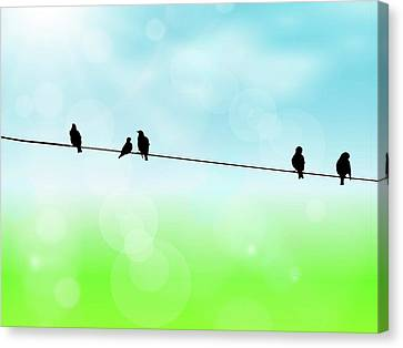 Canvas Print - Birds Hanging Around by Andrea Kollo