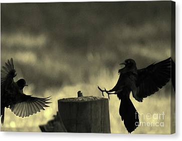 Birds In Silhouette Flying To Log Canvas Print by Dan Friend