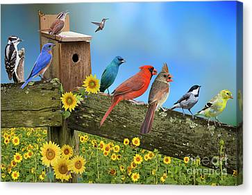 Birds Of A Feather Canvas Print by Bonnie Barry