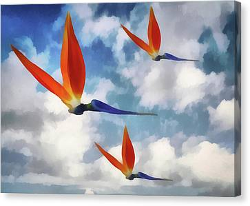 Fanciful Canvas Print - Birds Of Paradise Flower by Joseph Hollingsworth