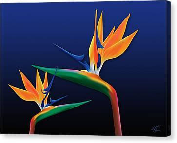Birds Of Paradise Canvas Print by Kenneth Armand Johnson