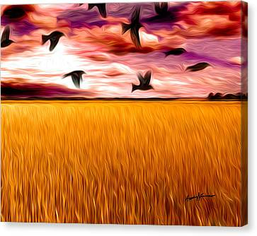 Birds Over Wheat Field Canvas Print