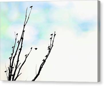 Canvas Print featuring the photograph Birds Silhouette In Tree Blue by Jennie Marie Schell