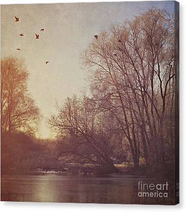 Canvas Print featuring the photograph Birds Take Flight Over Lake On A Winters Morning by Lyn Randle