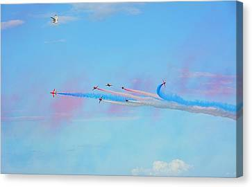 Birds View  Canvas Print by Mark Hinds