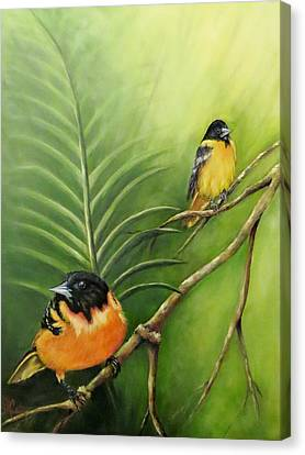 On The Lookout, Birds  Canvas Print