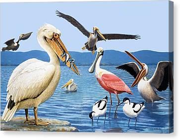 Birds With Strange Beaks Canvas Print by R B Davis