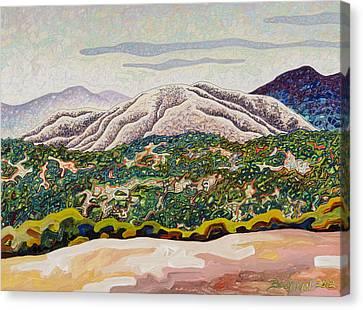 Birdseye Landscape #4 Canvas Print by Dale Beckman
