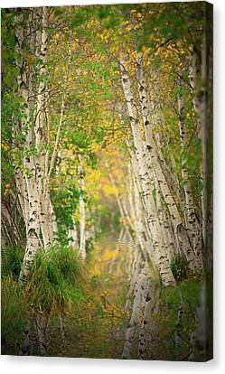 Canvas Print featuring the photograph Birtch Row  by Emmanuel Panagiotakis
