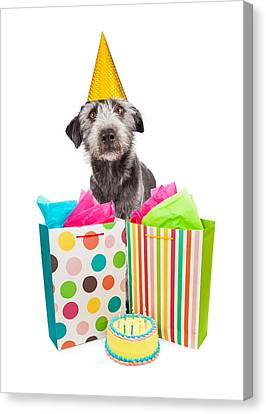 Birthday Party Dog Presents And Cake Canvas Print by Susan Schmitz