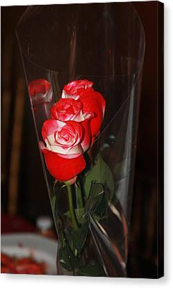 Canvas Print featuring the photograph Birthday Roses by Vadim Levin