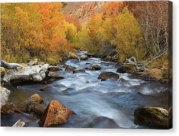 Canvas Print featuring the photograph Bishop Creek Fall Season by Dung Ma