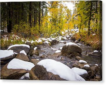 Bishop Creek Canvas Print by Joe Doherty