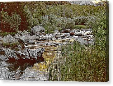 Bishop Creek Nightfall Canvas Print by Larry Darnell