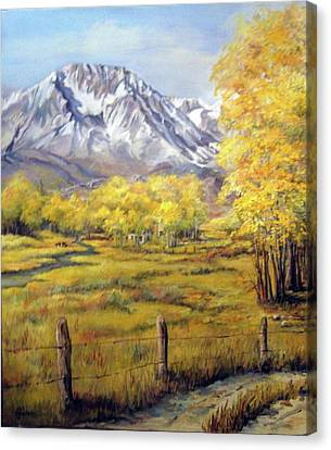 Bishop In The Fall Canvas Print by Donna Tucker
