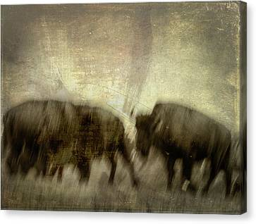 Canvas Print featuring the photograph Bison 3 by Joye Ardyn Durham