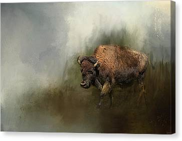 Bison After The Mud Bath Canvas Print by Jai Johnson