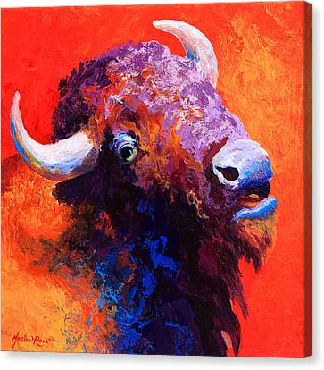 Bison Attitude Canvas Print by Marion Rose