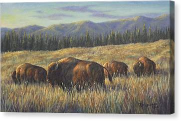 Canvas Print featuring the painting Bison Bliss by Kim Lockman