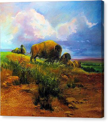 Bison Bluff Canvas Print by Robert Carver