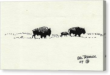 Bison Family Canvas Print by Eric Tressler