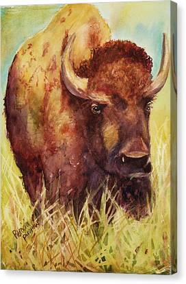 Bison Or Buffalo Canvas Print by Patricia Pushaw