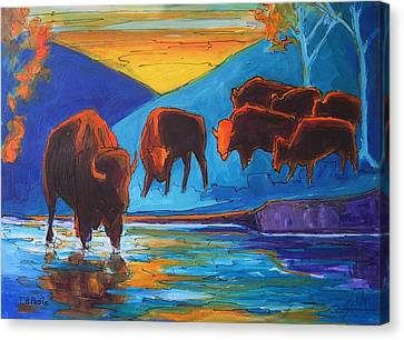 Bison Turquoise Hill Sunset Acrylic And Ink Painting Bertram Poole Canvas Print