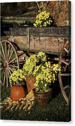 Bit Of Country - Vermont Style Canvas Print by Thomas Schoeller