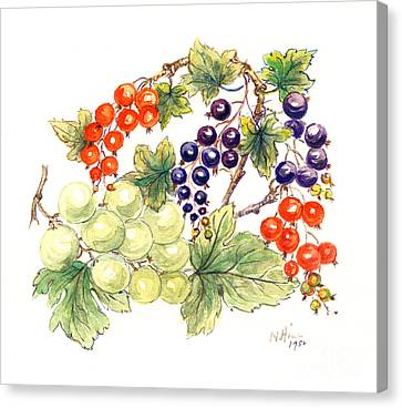 Black And Red Currants With Green Grapes Canvas Print by Nell Hill