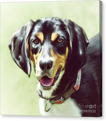 Canvas Print featuring the digital art Black And Tan by Lois Bryan