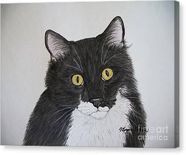 Canvas Print - Black And White Cat by Megan Cohen