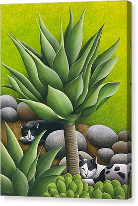 Black And White Cats With Agaves Canvas Print by Carol Wilson