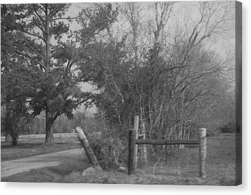 Black And White Country Scene Canvas Print by Nancy Stutes