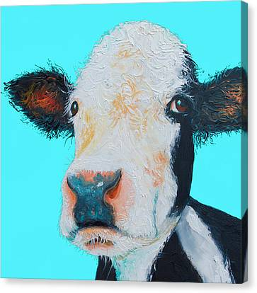 Black And White Cow On Blue Background Canvas Print by Jan Matson