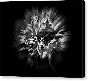 Black And White Flower Flow 1 Canvas Print