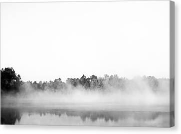 Black And White Fog Canvas Print by Shelby  Young