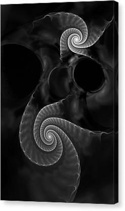 Black And White Fractal 080810 Canvas Print
