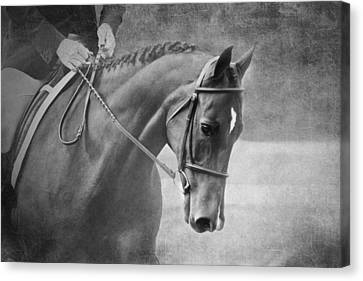Black And White Horse Photography - Softly Canvas Print by Michelle Wrighton