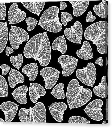 Nature Abstracts Canvas Print - Black And White Leaf Abstract by Christina Rollo