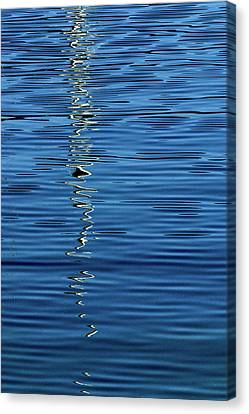 Canvas Print featuring the photograph Black And White On Blue by Tom Vaughan