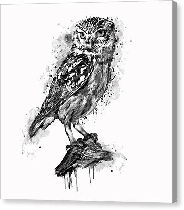 Colorful Paints Canvas Print - Black And White Owl by Marian Voicu