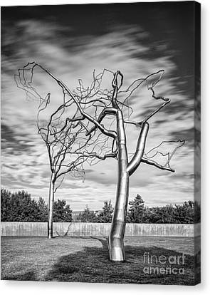Black And White Photograph - Roxy Paine - Conjoined At The Museum Of Modern Art - Fort Worth Texas Canvas Print by Silvio Ligutti