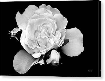 Black And White Rose Canvas Print by Christina Rollo