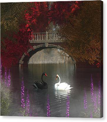 Black And White Swans Canvas Print by Jan Keteleer