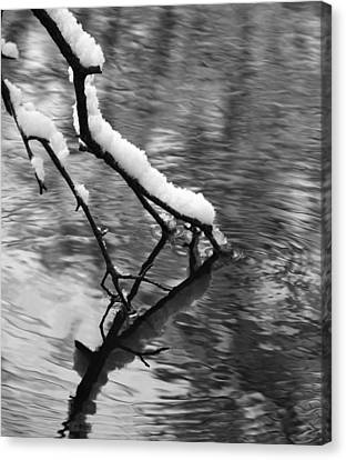 Black And White Winter Mood Canvas Print by Dan Sproul