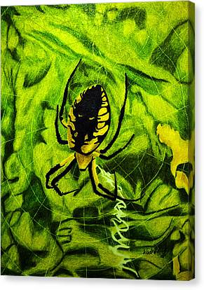 Black And Yellow Agriope Canvas Print