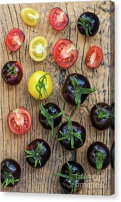 Garden Grown Canvas Print - Black And Yellow Tomatoes by Tim Gainey