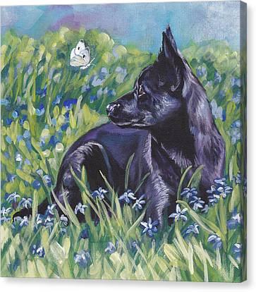 Black Australian Kelpie Canvas Print by Lee Ann Shepard